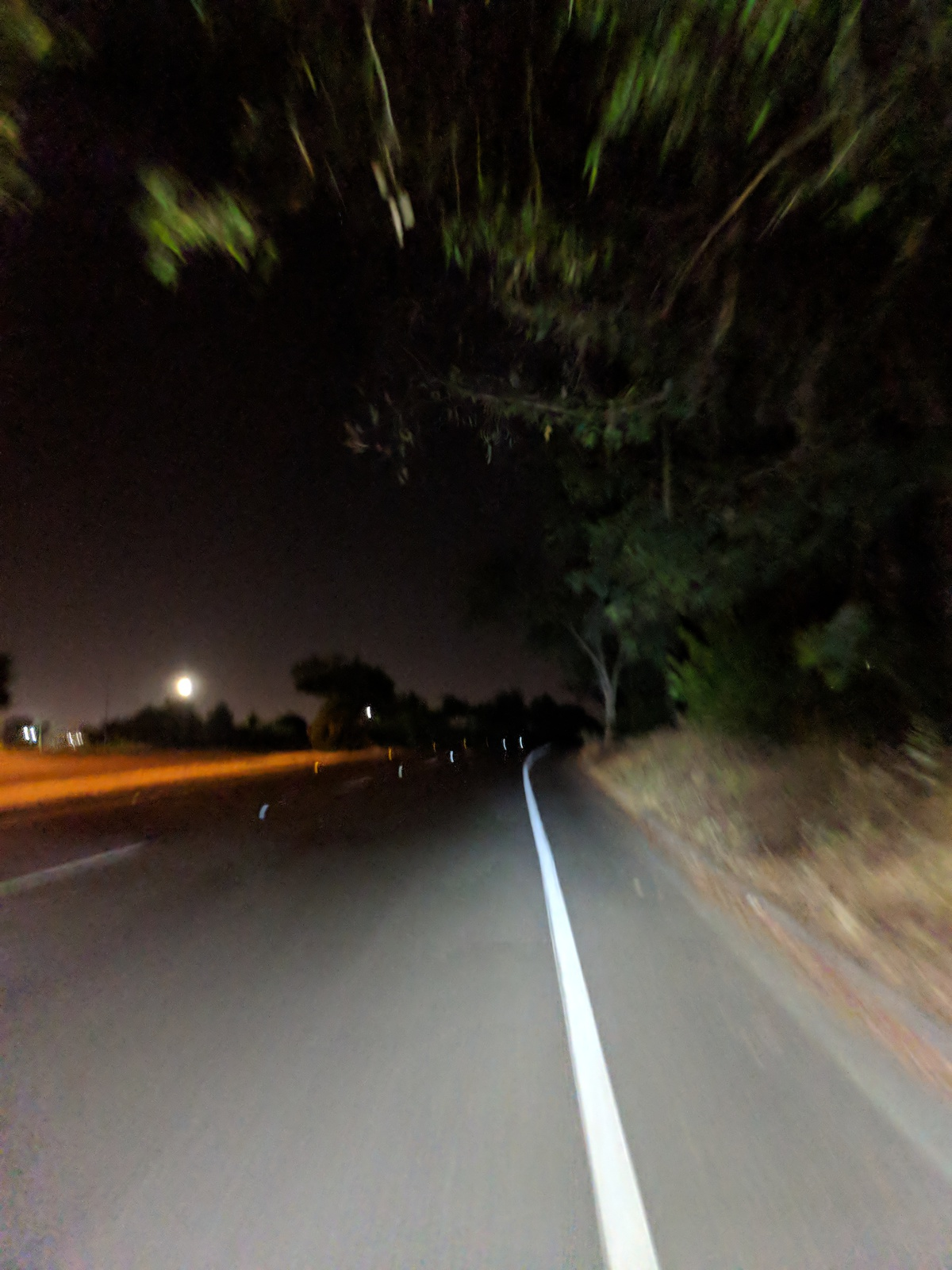 a blurry road at night, lit by headlamp, with trees whizzing by